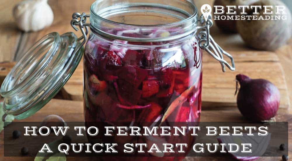 How To Ferment Beets
