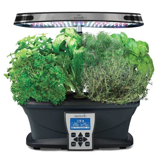 aero garden apartment herb kit