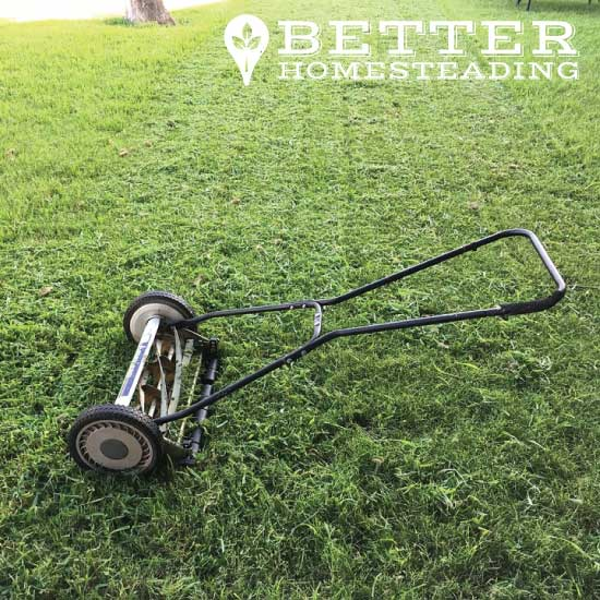 manual reel mower