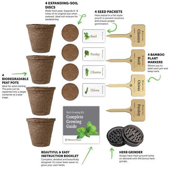 Guide To Growing Herbs Ultimate Herb Garden Ideas