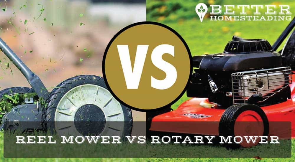reel mower vs rotary