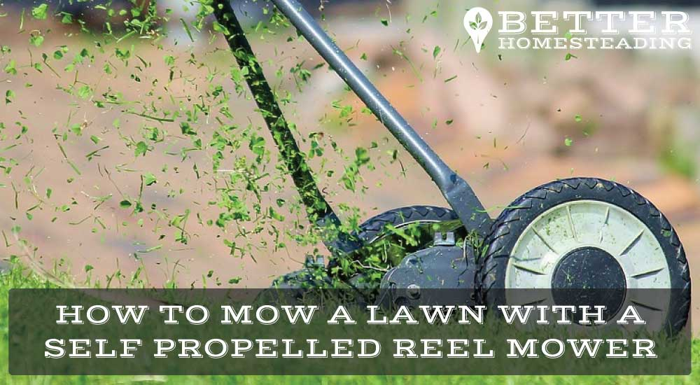 self propelled reel mower