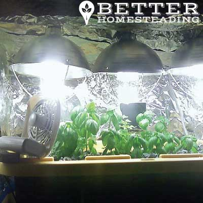 A Simple Grow Light Setup For Basil