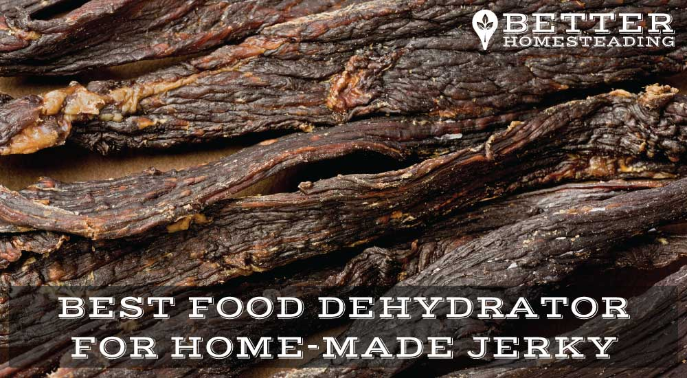 The Best Food Dehydrator For Jerky