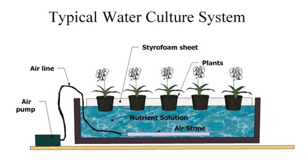 typical hydroponic system