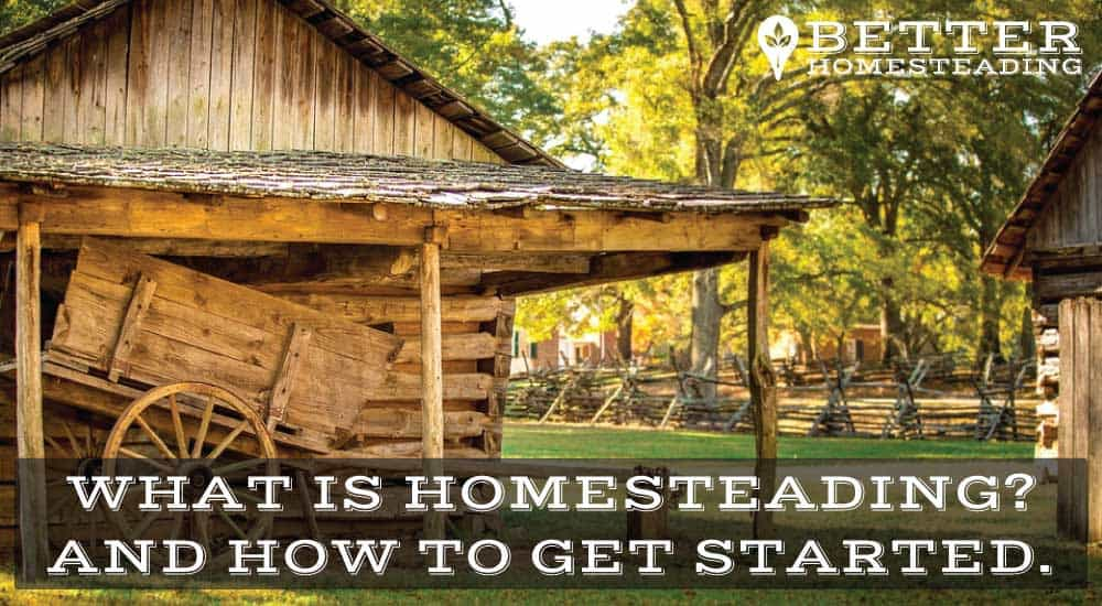 What Is Homesteading And How To Get Started