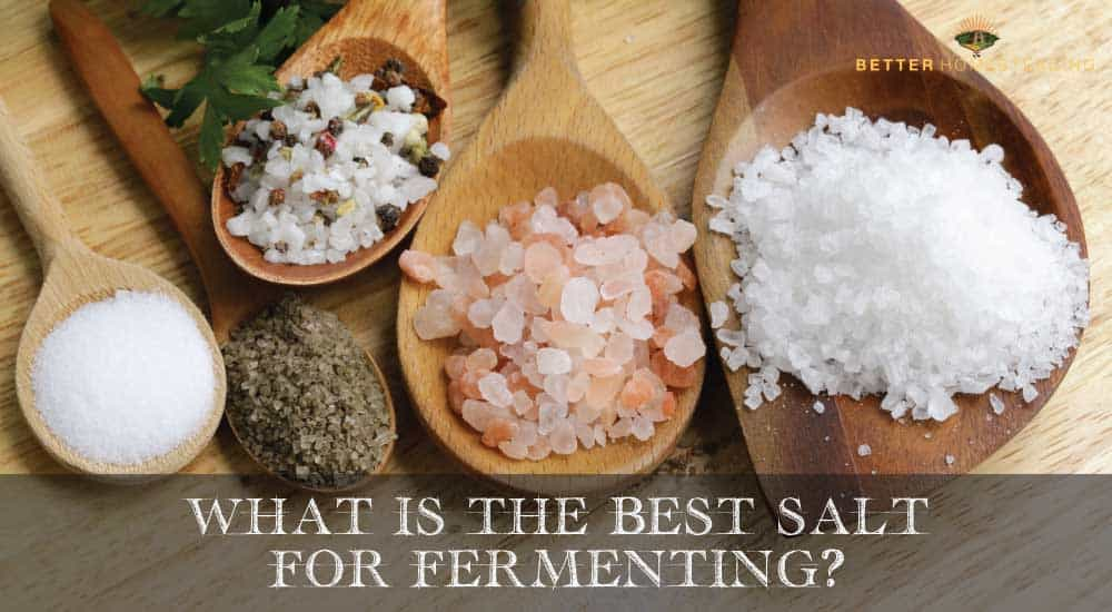 What Is The Best Salt For Fermenting