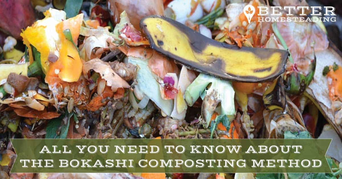 Vegetable scraps for the Bokashi composting method