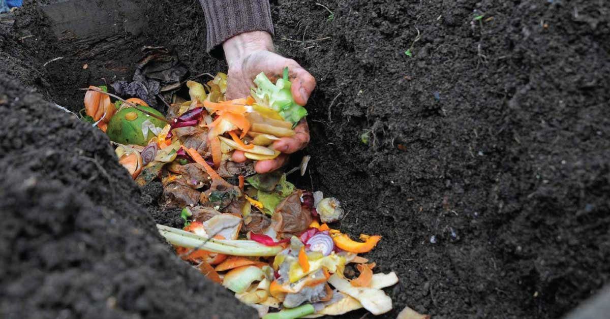 trench composting method