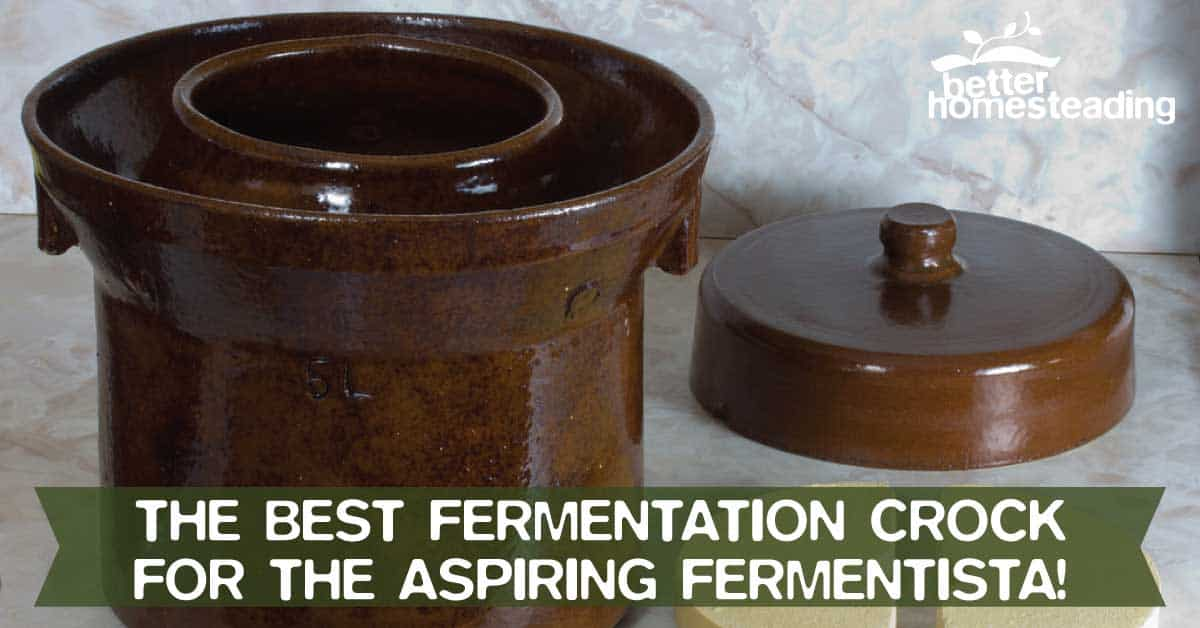 Best fermentation crock for the fermentista