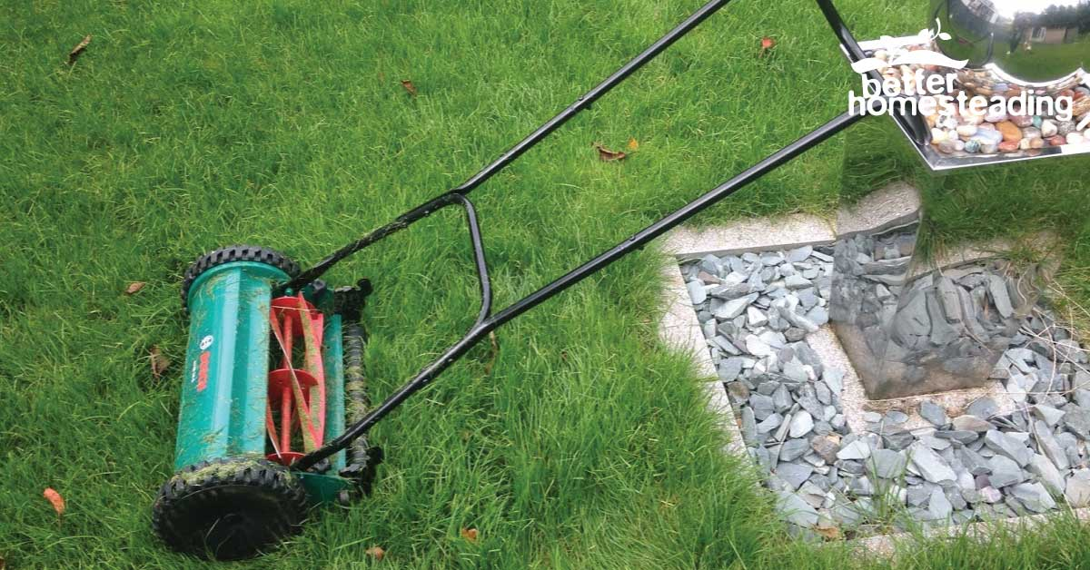 My Bosch push reel mower in the back garden before I mowed the lawn