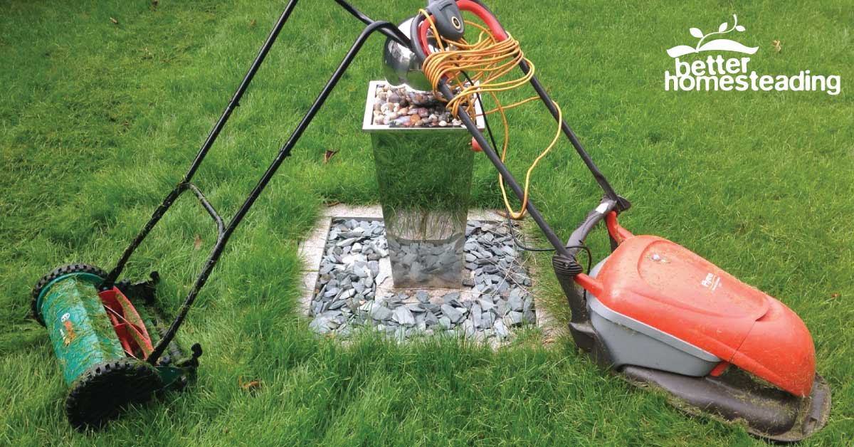 Electric Lawn Mower Vs Push Reel Mower in my garden beside the water feature
