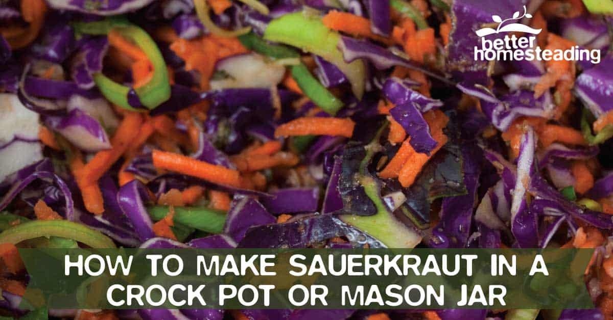 How To Make Sauerkraut - Ingredients In Bucket
