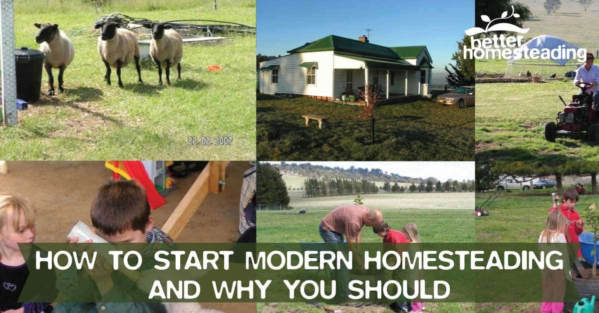 My Family And I Modern Homesteading In Australia
