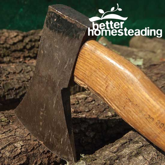 Axe head embedded in log