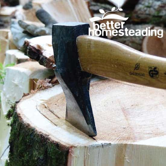 Maul embedded in log