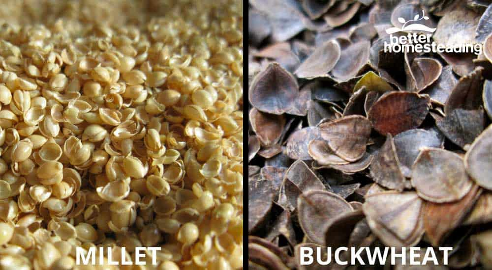 Millet And Buckwheat For Pillows