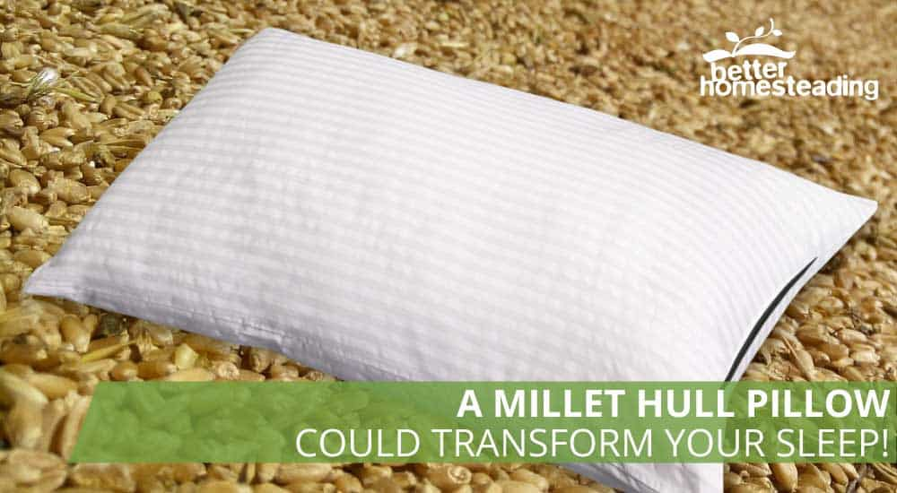 A pillow with a millet hull background